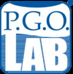 P.G.O. LAB – Soluzioni e Servizi per le imprese